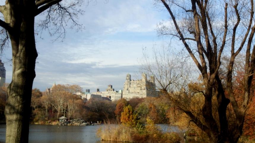 Central Park (6)