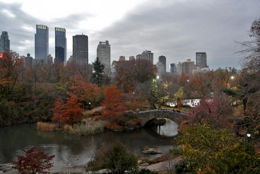 New York Central Park (2)